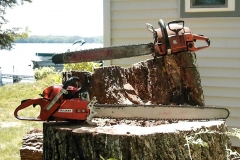 central-maine-tree-removal-5